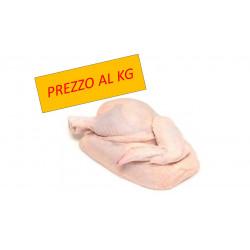 Gallina in Quarti (prezzo al Kg)